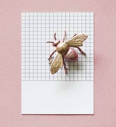 fly on graph paper diy pest control